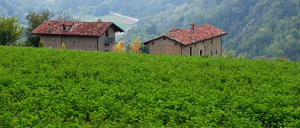 Cissone (paesaggio da Roddino)
