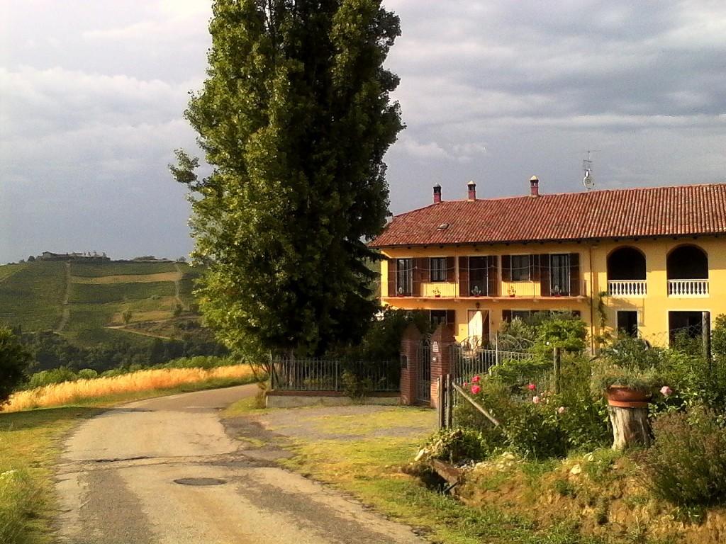 casa-masue
